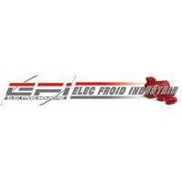 logo-EFI