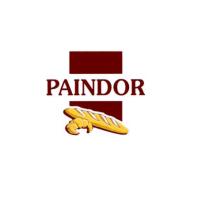 logo-Paindor