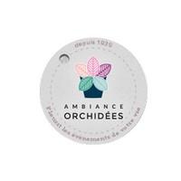 logo-Ambiance Orchidées